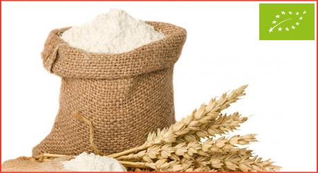 salute-gusto-bio-biologico-farina-polenta-couscous