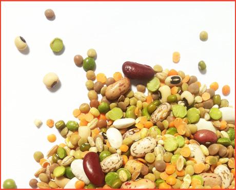 salute-gusto-legumi-legumes